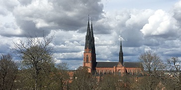 Uppsala guided tour
